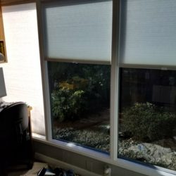 Business Window Tinting Puyallup